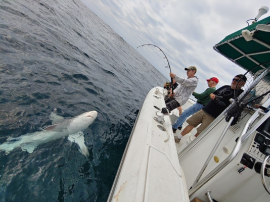 Offshore Fishing v. Inshore Fishing: Know the Differences
